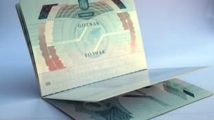 Goznak Pass Holderpage (1)b